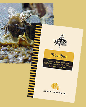Plan Bee Book Cover